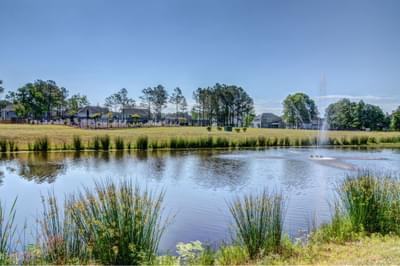 Tarin Woods New Homes for Sale in Wilmington NC