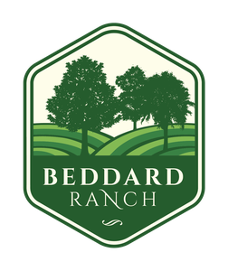 Beddard Ranch New Homes for Sale in Grimesland NC